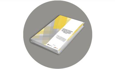 IIN presenta XV Informe sobre ESNNA al Secretario General