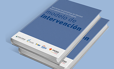 Workshop on Intervention Model for Noncustodial Penalties for Adolescents–  – Uruguay
