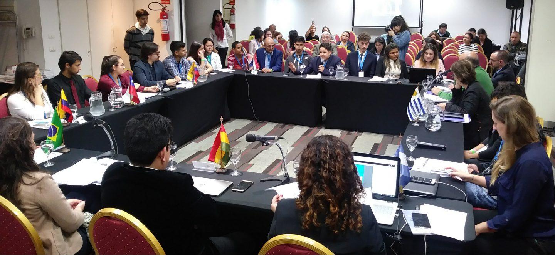 IIN expuso situación de los Derechos de la Niñez en las Américas en la RAADH de Mercosur