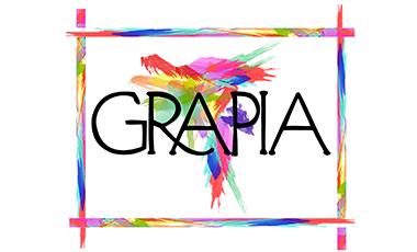 IIN y el GRAPIA evaluaron acciones ejecutadas durante el primer semestre 2019
