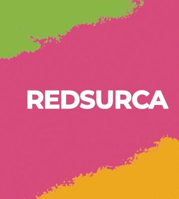IINOEA celebra la instalación de la Red Sur de Crianças e Adolescentes-RedSurca